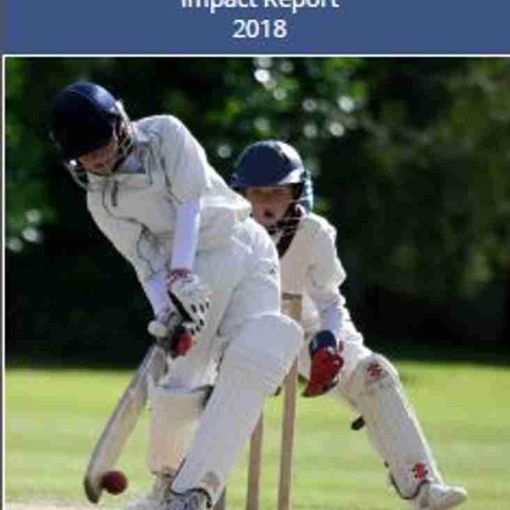 Cranleigh Cricket Club 2018 Impact Report
