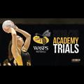 Wasp Trials