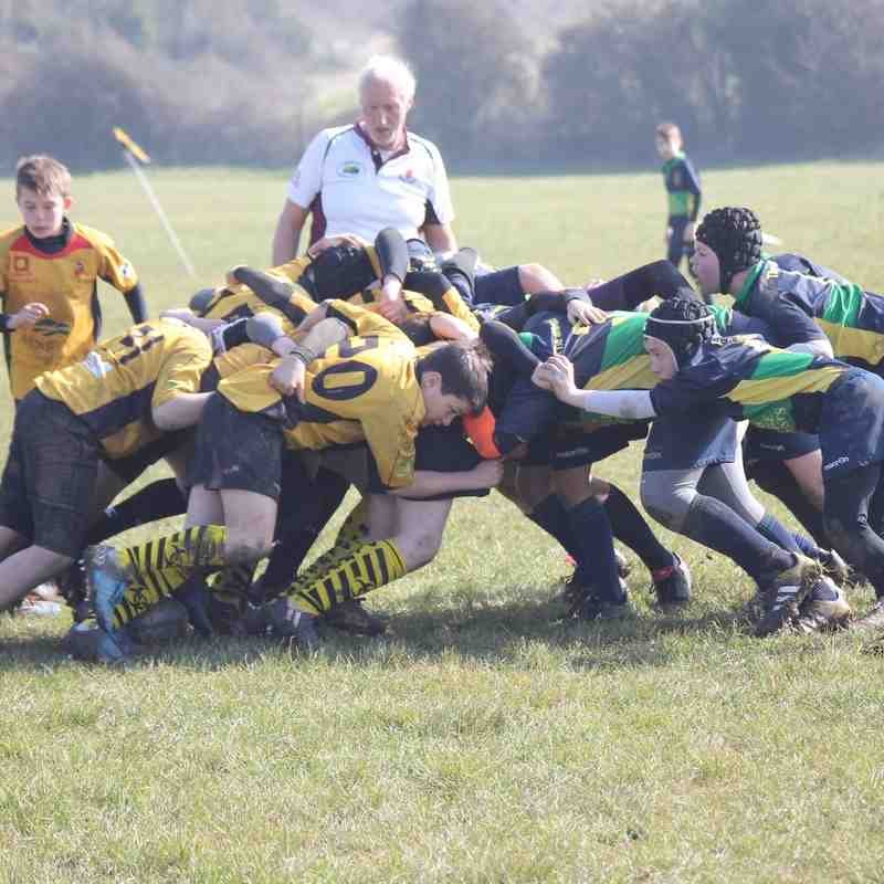 U13's Barbarians at Keynsham Super 8's Tournament in Keynsham colours