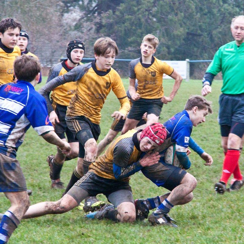 Tetbury U14s beat Stroud U14s 65-7