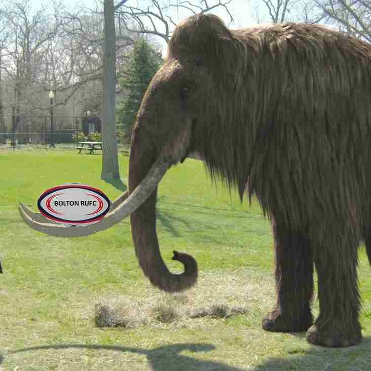 Bolton Mammoths - a blast from the past