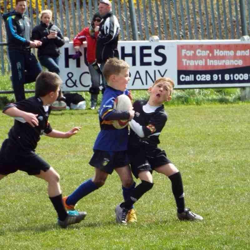 Fresh Fields Festival of Mini Rugby 2016