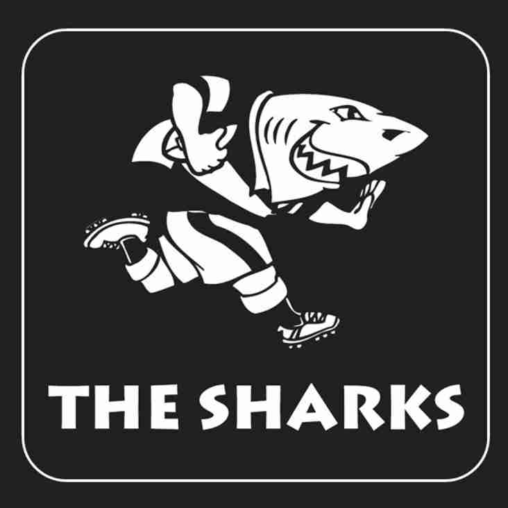 Watch out, the Sharks are coming!!!!