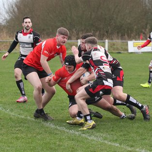 Great win for Ards 2nds over second placed Cooke