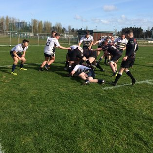 Match report: UUC v Ards 1sts
