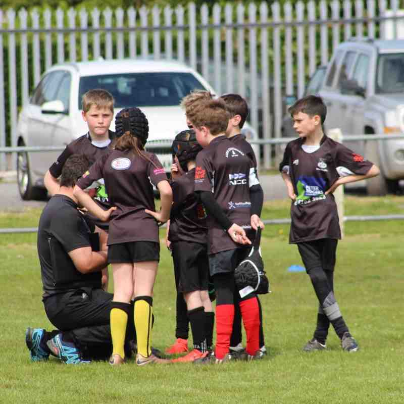 Mini Rugby Festival 2019