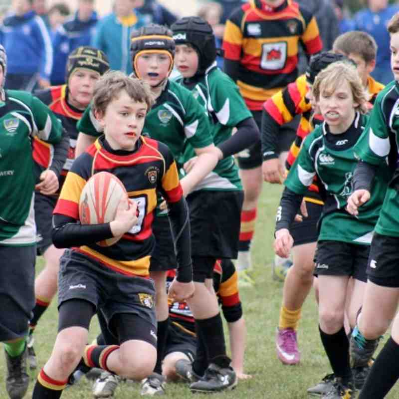 u12s at Devon RFU Festival Brixham 7-4-2013