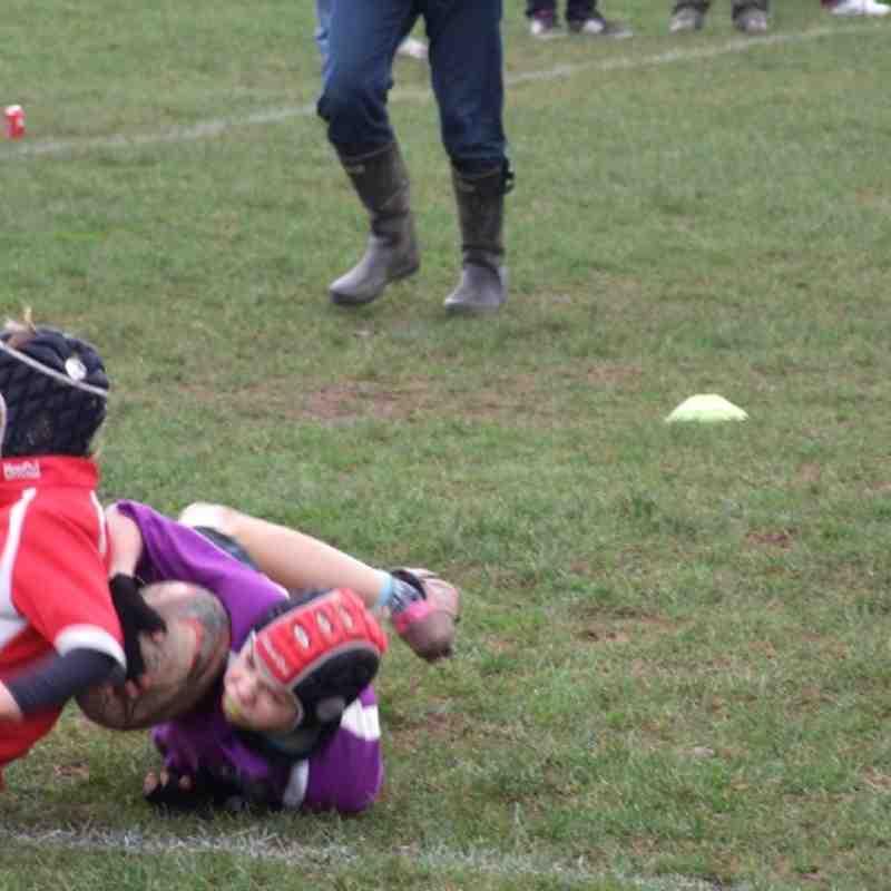 Exmouth v Sarecens u10's 22 Jan 2012