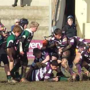 U13's Devon Cup Quarter Final