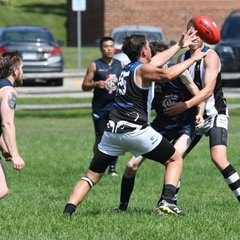 Round 10 Rebels vs Blues August 11 2018 Web selects