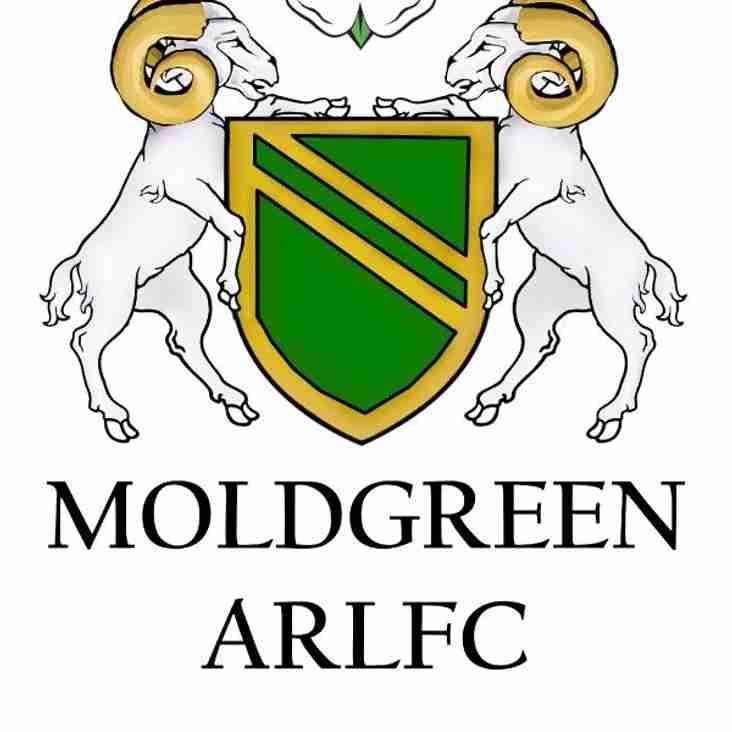 Moldgreen ARLFC & JRLFC Fun Day a Big Success