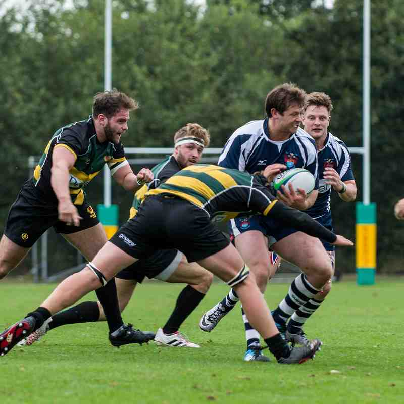 1st XV v Old Priorians - Sat 17 Sep 2016