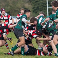 Colts v Teignmouth 081016