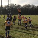 Mansfield excel in comprehensive home victory