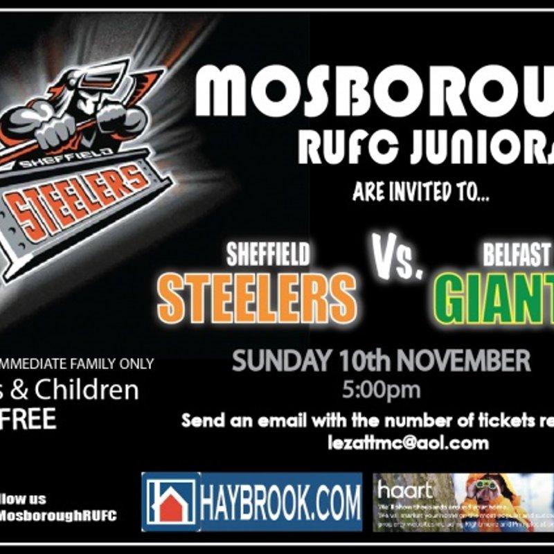 Sheffield Steelers vs Belfast Giants