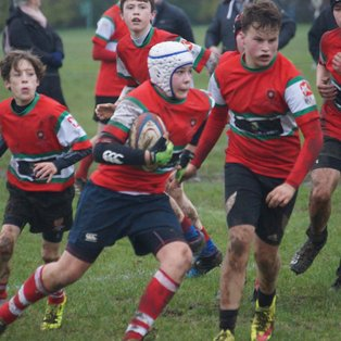 Petersfield RFC travel to New Milton for the semi-final