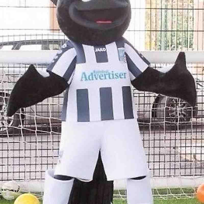 New mascot