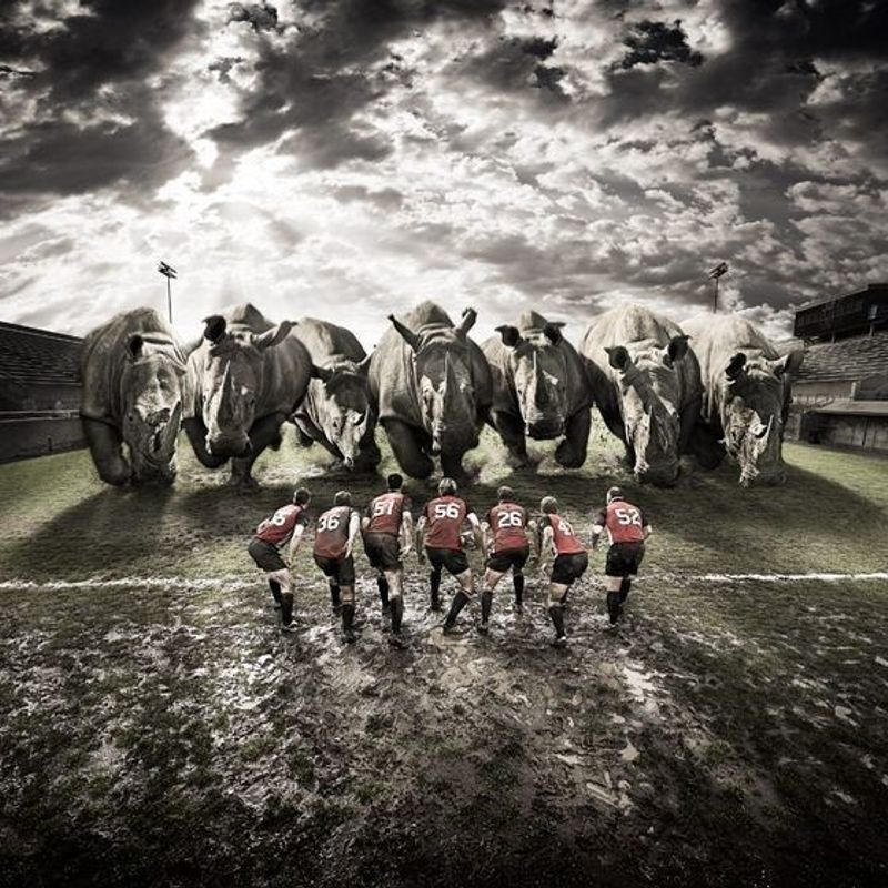 TOR RFC Fantasy League