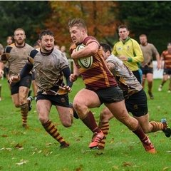 TOR 1st XV v Oldfield Old Boys - 14th November 2015