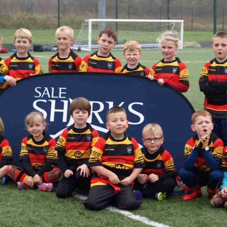 SALE SHARKS RUGBY CAMP returns to Southport