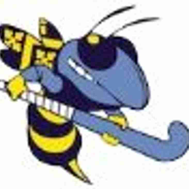 The Hornet - New Website Special