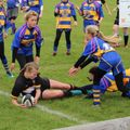Under 15 Girls lose to Clevedon RFC 24 - 31