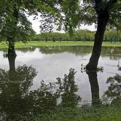 Tonight's Broomhall CC game is off