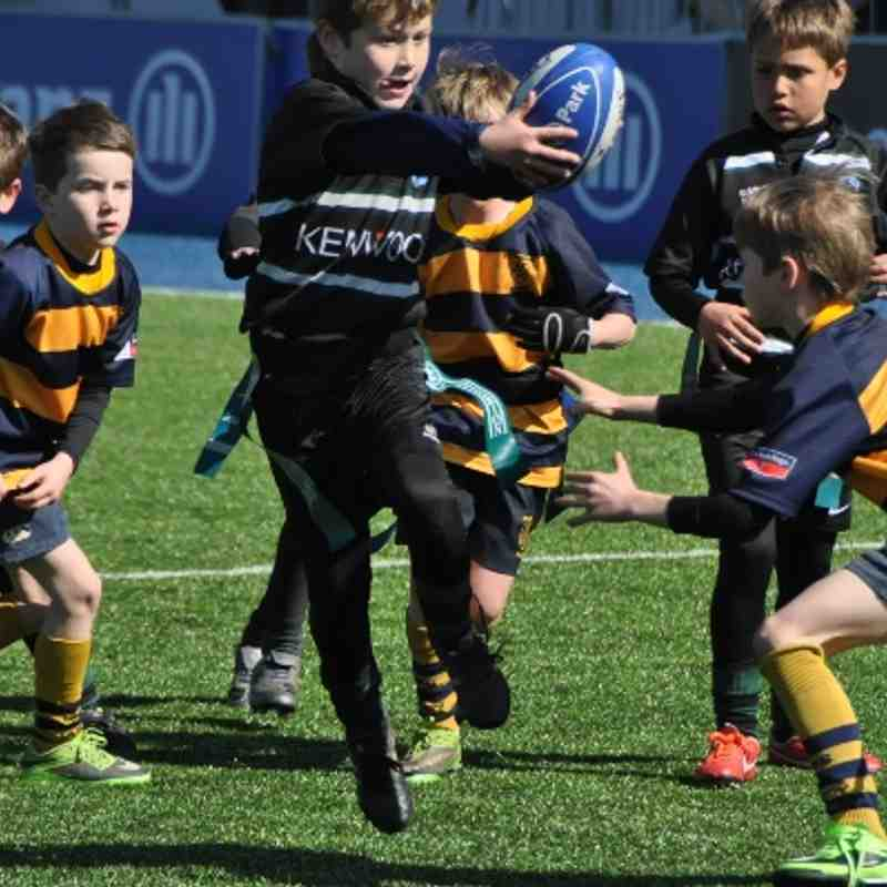 U8s Saracens/Alan Day Champion of Champions - Allianz Park Sun 13 April 2014