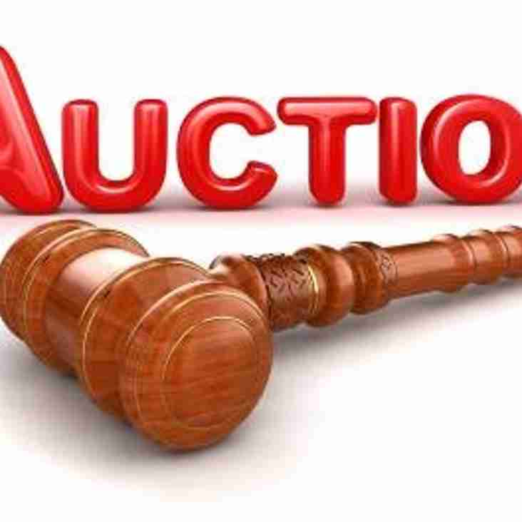 Update On Auction Night.