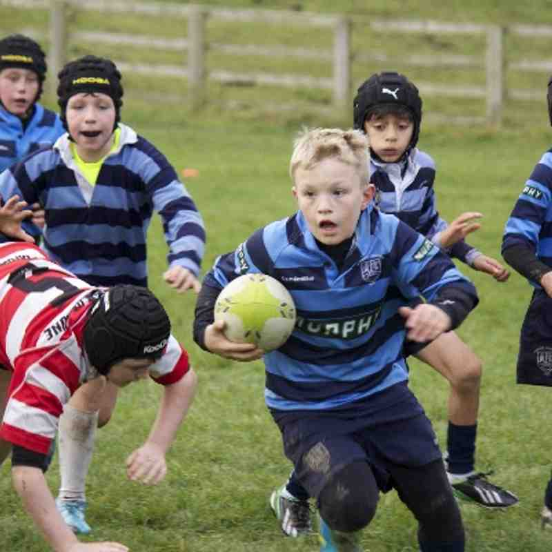 U10 Vale of Loom vs Collegiate 24/11/13