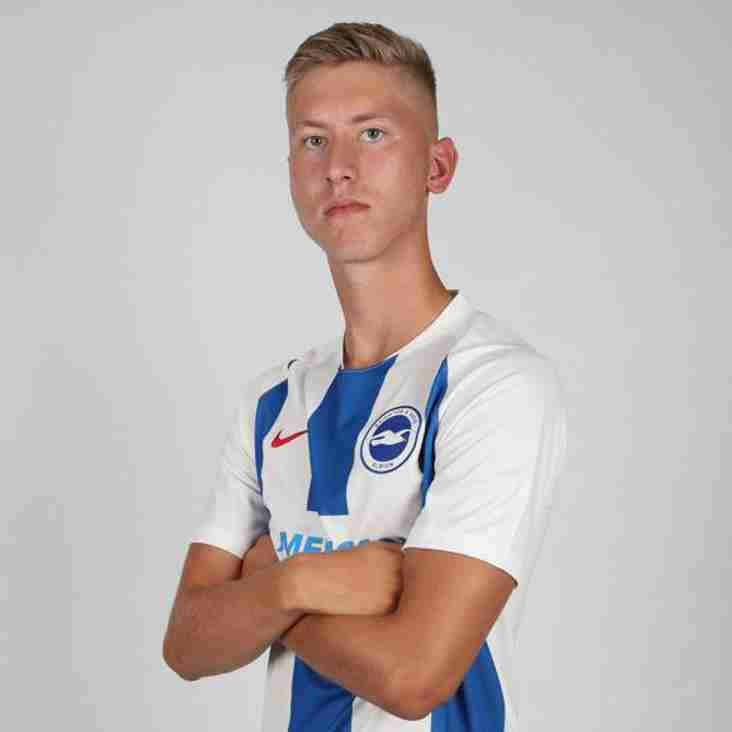 Boro sign Brighton youngster on loan
