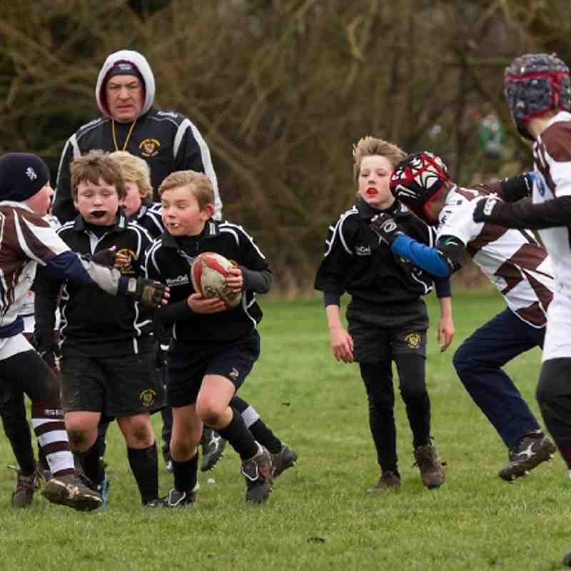 RHRFC Under 9s vs Southend 3rd Feb 2013