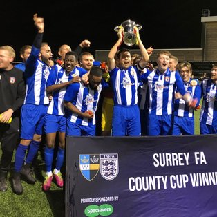 The Lingers Win The Surrey FA Premier County Cup Final !!!!!!!!!!!!!!!!