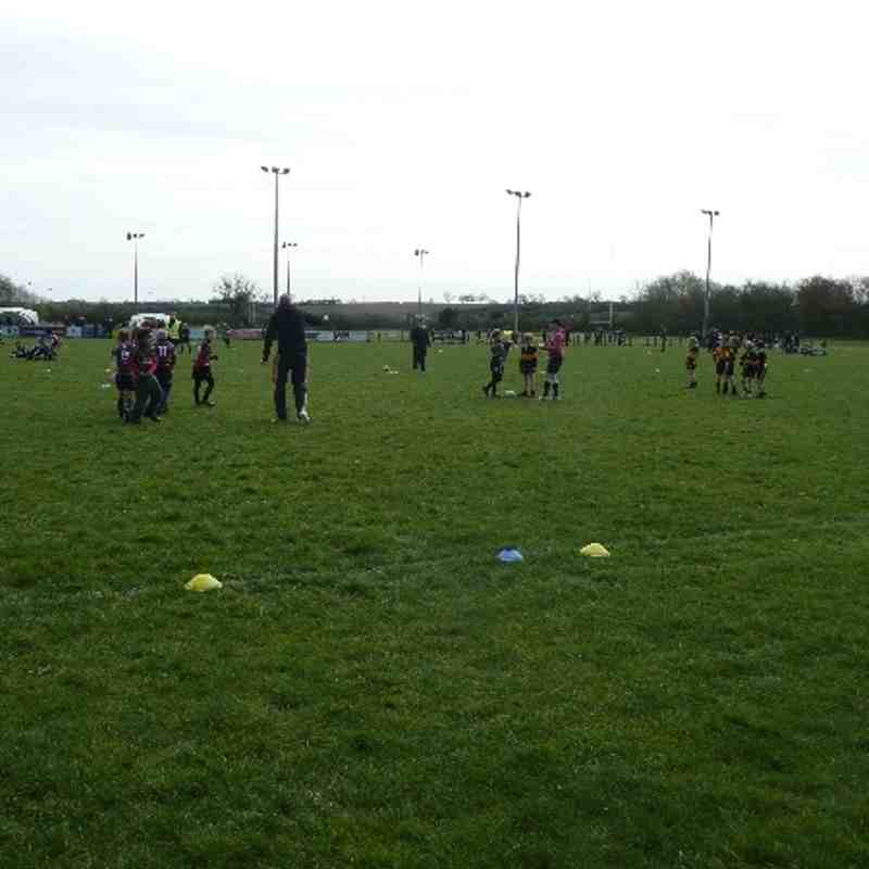 Under 7's Syston RFC Festival April 2012