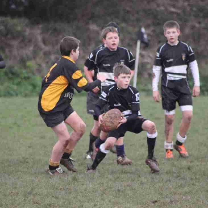 Action packed rugby weekend - Brixham RFC 1st XV home to Dings plus Youth cup action!
