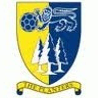 Ware 1 Norwich United 3