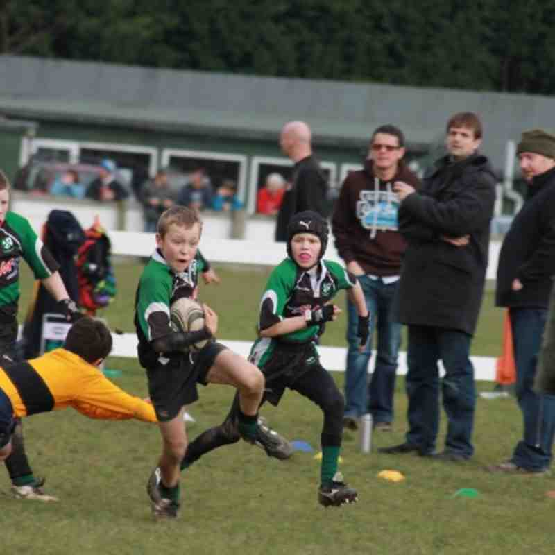 U11 Ivy v Wadebridge 26 Feb 12