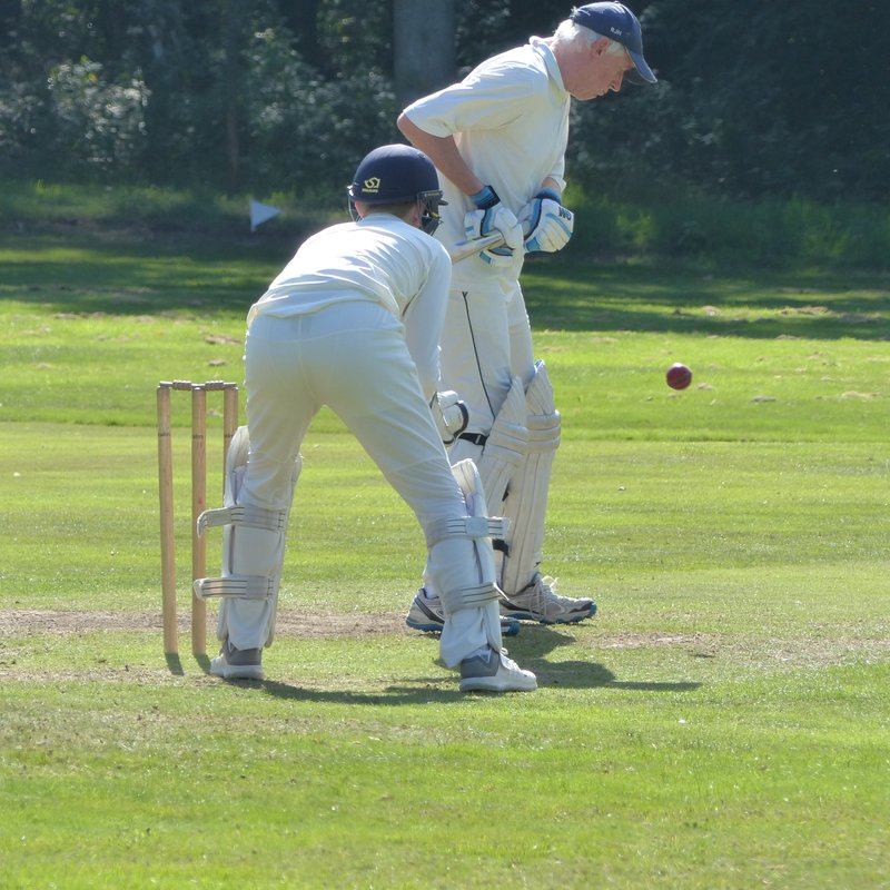 Millers beaten by French Cricket