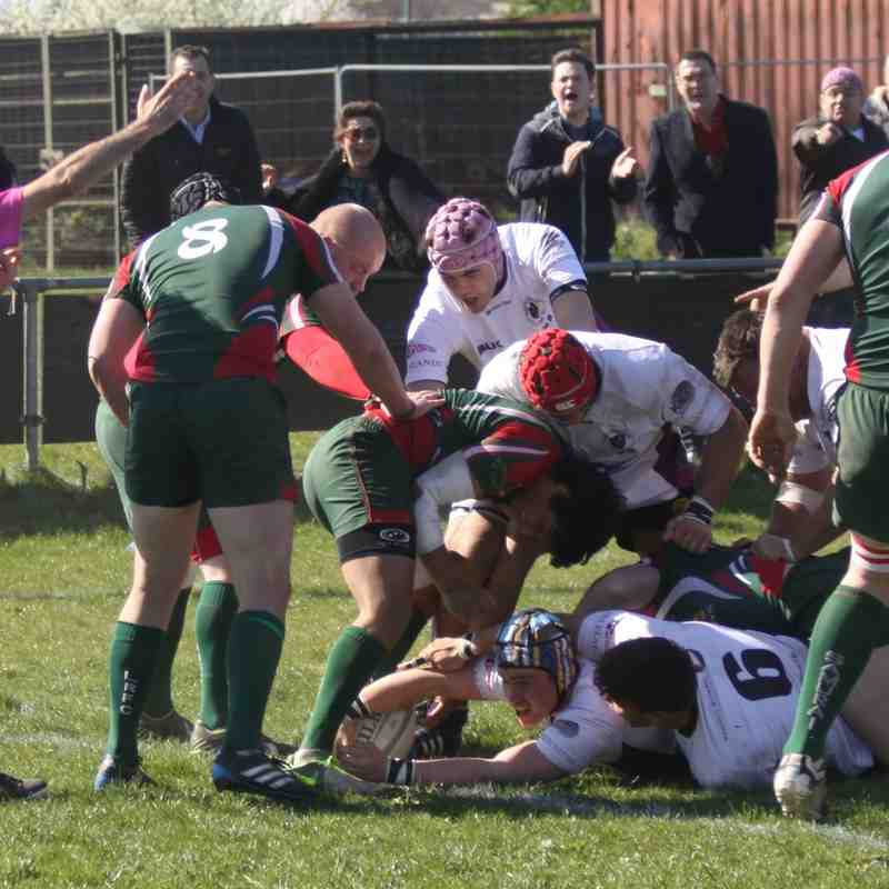 R&GP1st XV v Luton - 18th april '15
