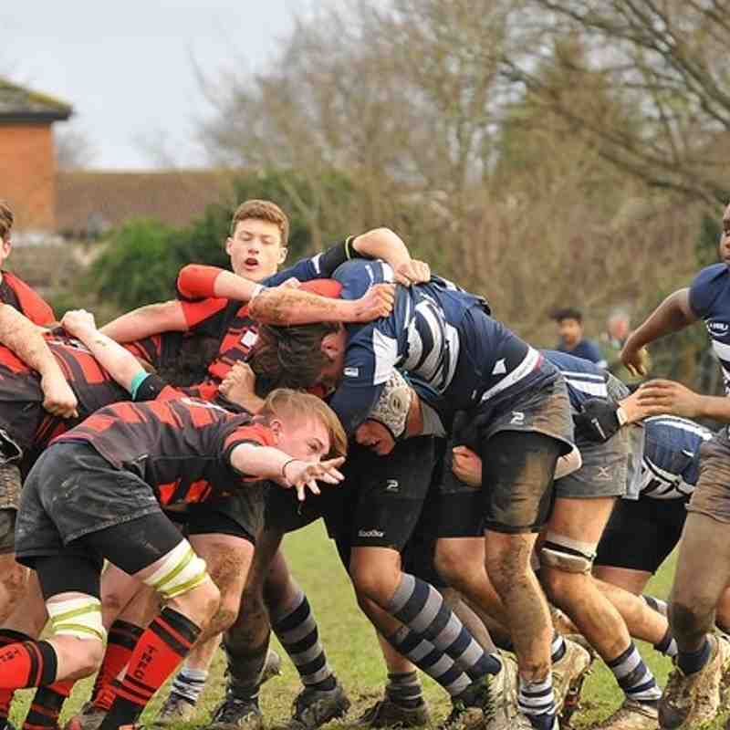 Colts v Twickenham 24 Jan 2016
