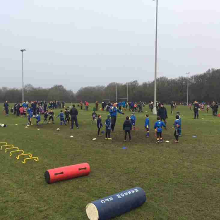 Minis & Youth rugby Sunday 18th Feb