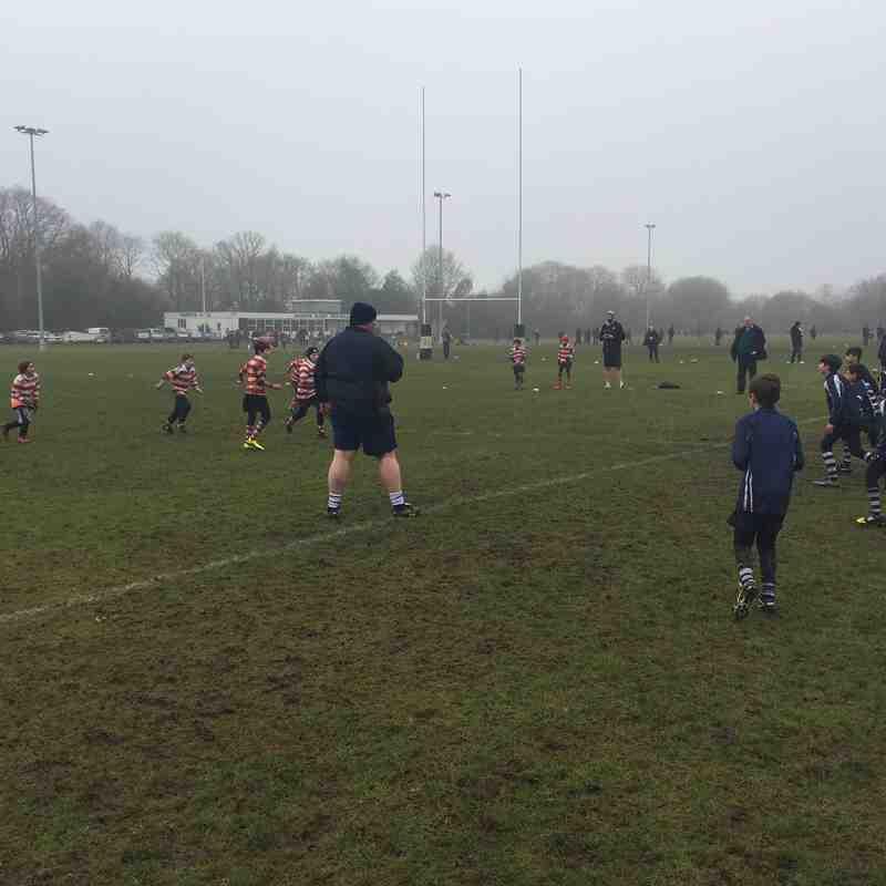 Harrow Minis v Finchley 5th Feb 2017