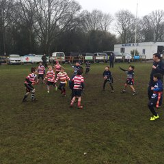 Harrow Minis v Finchley 5th Feb 2017