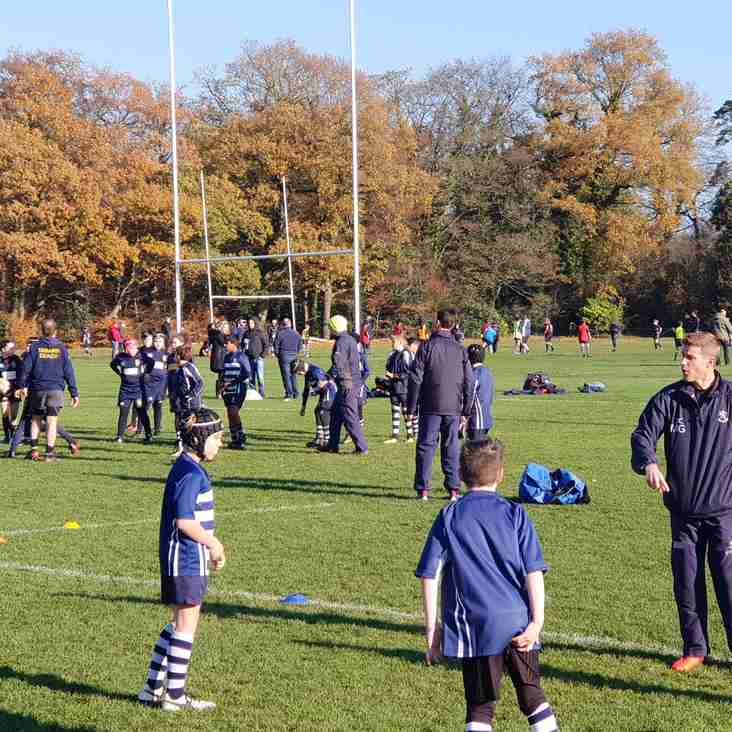 Minis and Youth teams away on Sunday 25th Nov