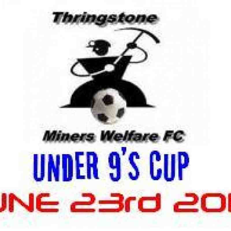 THE THRINGSTONE CUP