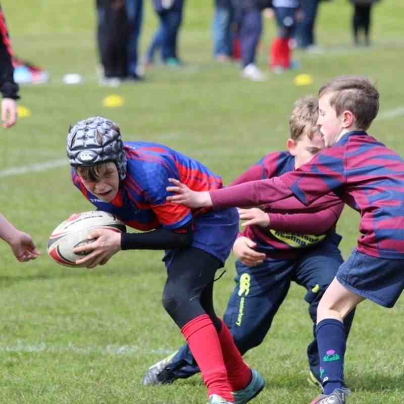 Lasswade Minis Tournament - 1st May 2016