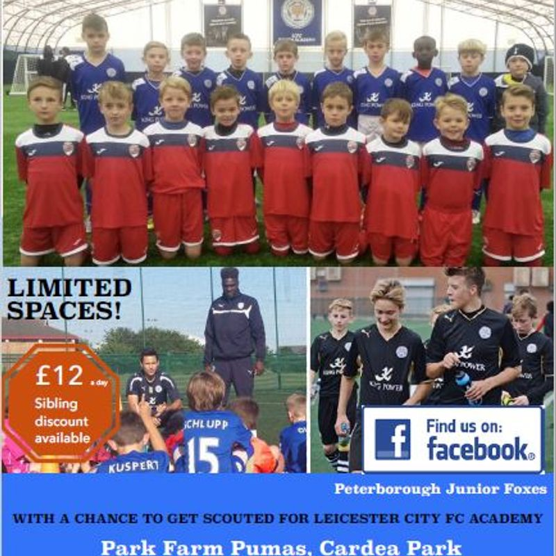 Junior Foxes Holiday Camp