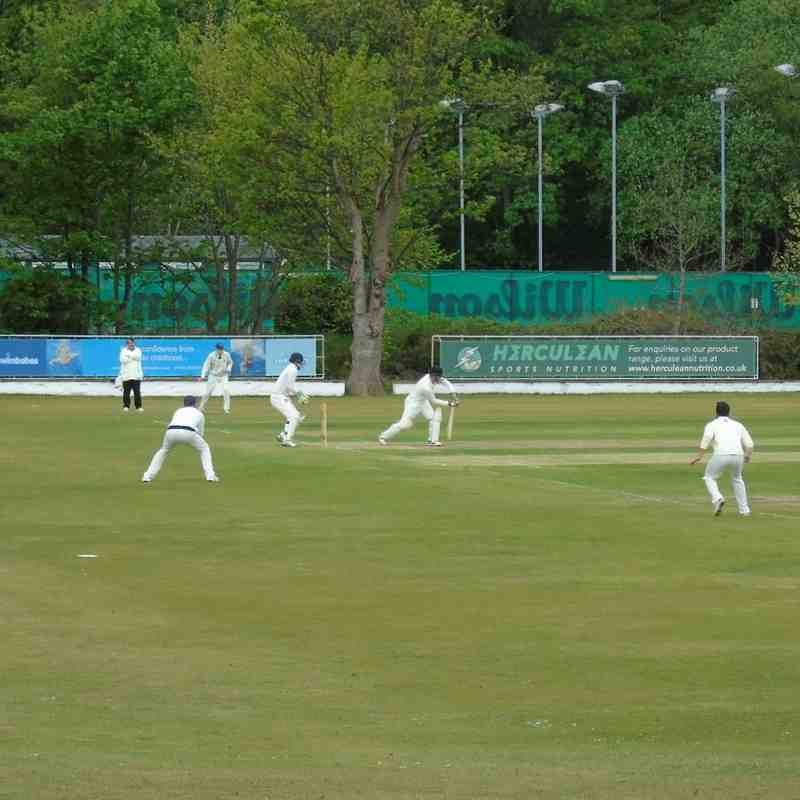 1st XI - the season so far (up to Honley)