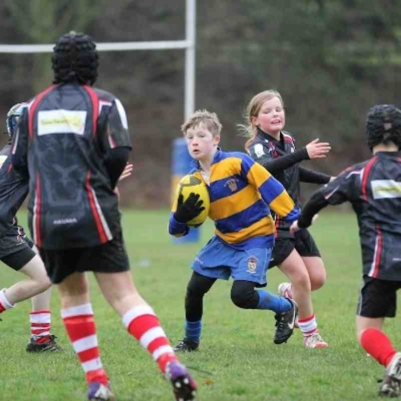 2014Jan12 OLs u11s vs Rugby Lions