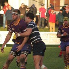 BT NL1 - Musselburgh RFC v Marr Rugby (5.11.16)